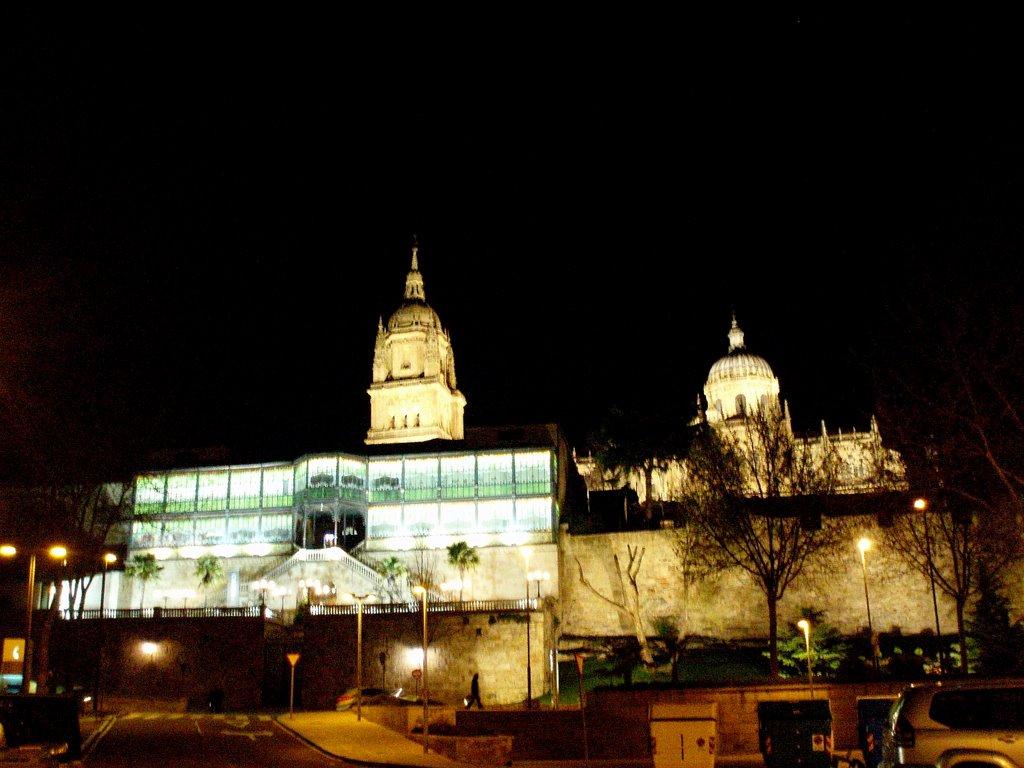 La Catedral Nueva y la Casa Lis de noche