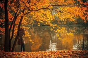 otoño ventajas de viajar